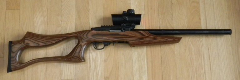 Dlask Arms DAR 22 Rifle