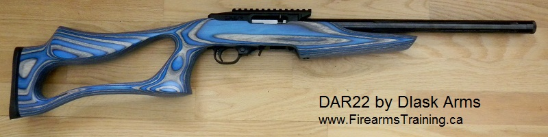 DAR 22 rifle with Sky Blue Boyds' SS Evolution stock